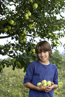 boy holding hand full of apples - Alex Mares-Manton