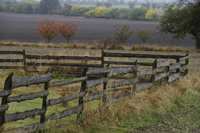 Country fence made of wood - Alex Mares-Manton