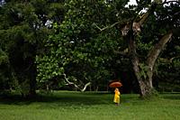 young boy holding orange umbrella - Nugene Chiang